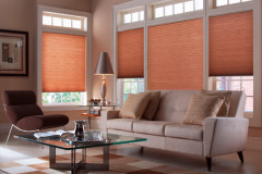 window-honeycomb-blinds-blindscom_978400af4cc0565f72a80369281a14c5_3x2_jpg_600x400_q85