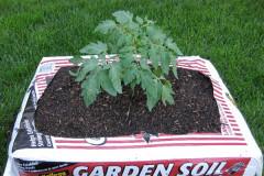 garden-bags-soil_1d70fe7033528395d5223ab898b1ad6f_3x2_jpg_600x400_q85