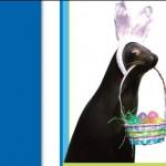 Easter @ Seaquarium